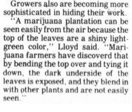 The Courier. Dec 21, 1986